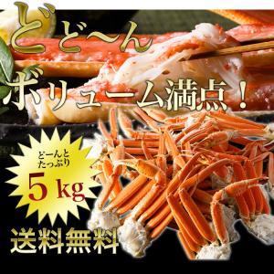 カニ かに 蟹 特大ずわいがに脚5kg ズワイガニ ボイルかに  冷凍便  あすつく対応|morigen|02