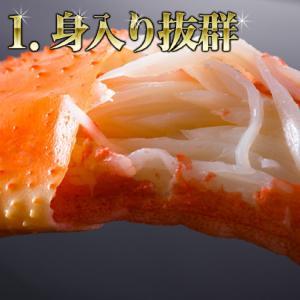 カニ かに 蟹 特大ずわいがに脚5kg ズワイガニ ボイルかに  冷凍便  あすつく対応|morigen|03