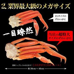 カニ かに 蟹 特大ずわいがに脚5kg ズワイガニ ボイルかに  冷凍便  あすつく対応|morigen|04
