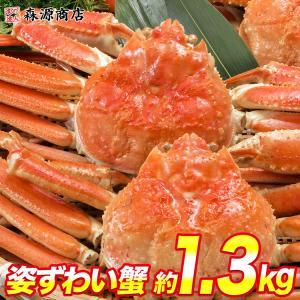 カニ かに 蟹 訳あり ズワイガニ / ずわい蟹 姿2尾セット 大サイズ かに味噌 送料無料 冷凍便 お歳暮|morigen