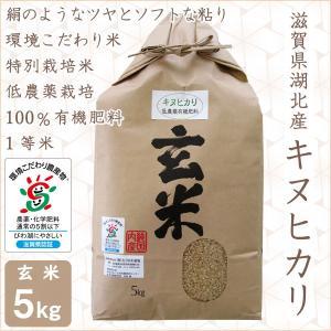 低農薬 キヌヒカリ 5kg 令和2年産 玄米 100%有機肥料 特別栽培米 1等米 滋賀県環境こだわり米 morikawa-noujou