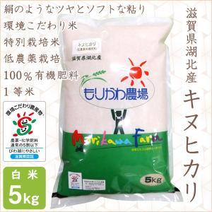 低農薬 キヌヒカリ 5kg 令和2年産 白米 100%有機肥料 特別栽培米 1等米 滋賀県環境こだわり米|morikawa-noujou