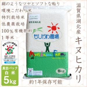 低農薬 キヌヒカリ 5kg 令和2年産 真空パック 白米 100%有機肥料 長期保存 特別栽培米 1等米 滋賀県環境こだわり米|morikawa-noujou