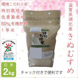 低農薬 きぬむすめ 2kg 令和2年産 白米 50%有機肥料特別栽培米 1等米 滋賀県環境こだわり米 morikawa-noujou
