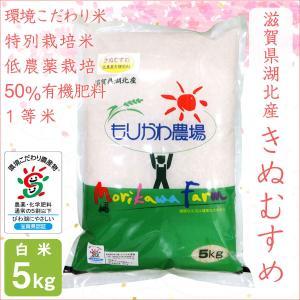 低農薬 きぬむすめ 5kg 令和2年産 白米 50%有機肥料 特別栽培米 1等米 滋賀県環境こだわり米 morikawa-noujou