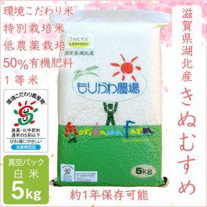 低農薬 きぬむすめ 5kg 令和2年産 真空パック 白米 50%有機肥料 長期保存 特別栽培米 1等米 滋賀県環境こだわり米 morikawa-noujou