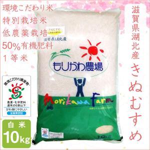 低農薬 きぬむすめ 10kg 令和2年産 白米 50%有機肥料 特別栽培米 1等米 滋賀県環境こだわり米 morikawa-noujou