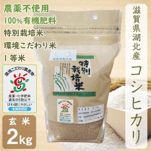 無農薬 コシヒカリ 2kg 令和2年産 玄米 農薬不使用 100%有機肥料 特別栽培米 1等米 滋賀県環境こだわり米|morikawa-noujou