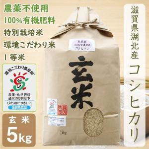 無農薬 コシヒカリ 5kg 令和2年産 玄米 農薬不使用 100%有機肥料 特別栽培米 1等米 滋賀県環境こだわり米|morikawa-noujou