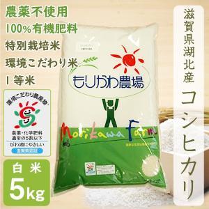 無農薬 コシヒカリ 5kg 令和2年産 白米 農薬不使用 100%有機肥料 特別栽培米 1等米 滋賀県環境こだわり米|morikawa-noujou