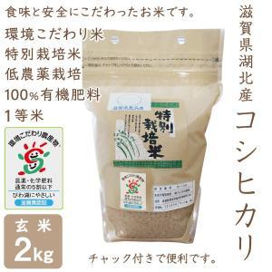低農薬 コシヒカリ 2kg 令和2年産 玄米 100%有機肥料 特別栽培米 1等米 滋賀県環境こだわり米|morikawa-noujou