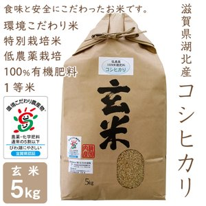低農薬 コシヒカリ 5kg 令和2年産 玄米 100%有機肥料 特別栽培米 1等米 滋賀県環境こだわり米|morikawa-noujou