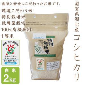 低農薬 コシヒカリ 2kg 令和2年産 白米 100%有機肥料 特別栽培米 1等米 滋賀県環境こだわり米|morikawa-noujou