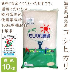 低農薬 コシヒカリ 10kg 令和2年産 白米 100%有機肥料 特別栽培米 1等米 滋賀県環境こだわり米|morikawa-noujou