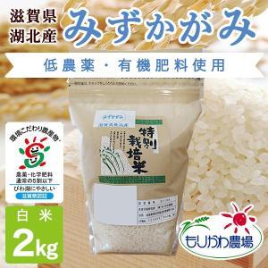 令和2年 滋賀県産 みずかがみ 白米 2kg|morikawa-noujou