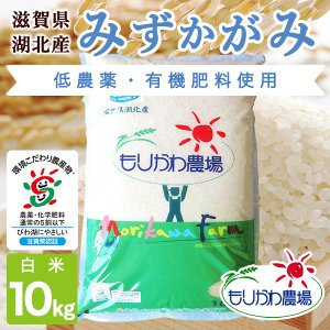 令和2年 滋賀県産 みずかがみ 白米 10kg|morikawa-noujou