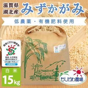 令和2年 滋賀県産 みずかがみ 白米 15kg|morikawa-noujou