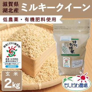 【新米】令和3年 滋賀県産 ミルキークイーン 玄米 2kg|morikawa-noujou