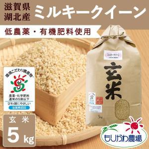 【新米】令和3年 滋賀県産 ミルキークイーン 玄米 5kg|morikawa-noujou