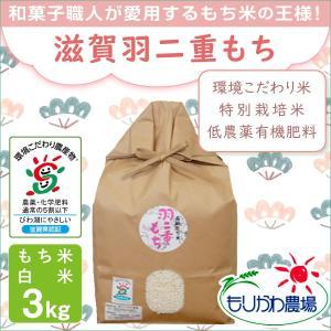 低農薬 有機肥料 滋賀羽二重もち 3kg 令和2年産 環境こだわり米 特別栽培米 morikawa-noujou