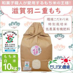 低農薬 有機肥料 滋賀羽二重もち 10kg 令和2年産 環境こだわり米 特別栽培米 morikawa-noujou