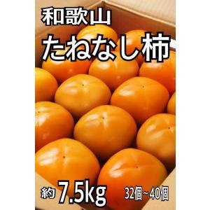 和歌山県産 たねなし柿 L~2L 7.5キロ