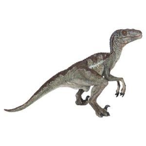 恐竜 フィギュア PAPO パポ DINOSAURS ヴェロキラプトルB 55023|morinokobito