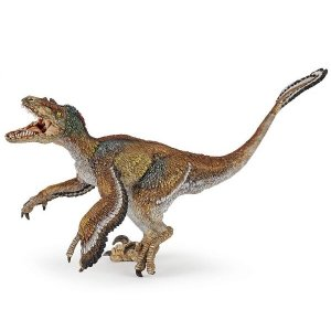 ヴェロキラプトル(羽毛) 55055 恐竜フィギュア PAPO morinokobito