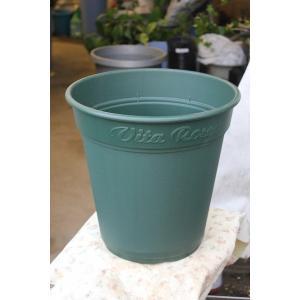植え替え様バラ鉢 ロゼアポット300(10号)|morinouen-store