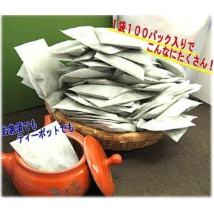 業務用並煎茶ティーバッグ10g×100p ※宅急便発送のみ ※条件付き送料無料 注文後即発送|morioen