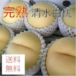 大玉 清水白桃 3kg(10〜12個)|morioka-ringo