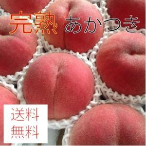 特秀 あかつき 2kg(6個)|morioka-ringo