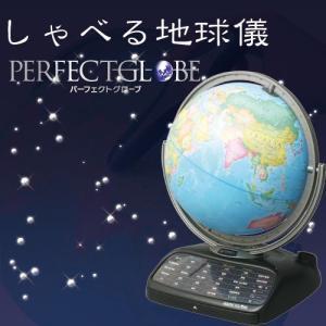 しゃべる地球儀 パーフェクトグローブ|morisige