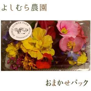 20輪で1パックのオーソドックスなタイプになります。 花の種類も色もこちらにおまかせ頂きます♪ お花...