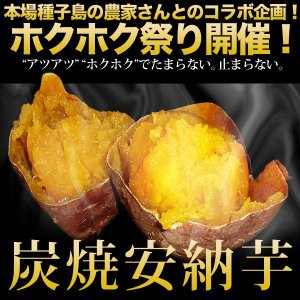 種子島産 焼安納芋(12袋入り)|moriya-honpo