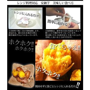 種子島産 焼安納芋(12袋入り)|moriya-honpo|05