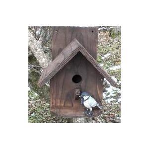 小鳥の巣箱 シジュウカラ邸 焼杉タイプ シュロ縄付き 完成品 シジュウカラ 巣箱 三角屋根 moriyamuku-com