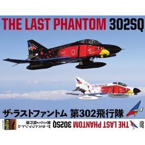 ザ・ラストファントム 第302飛行隊 DVD