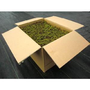 [送料(梱包数)の目安]:この商品は1箱で1梱包になります。 [サイズ]約270mm×約360mm×...