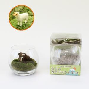 富士の苔テラリウムキット(羊付)