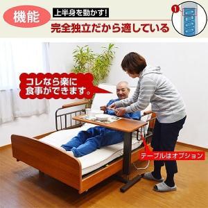 電動ベッド 開梱設置付きレビューで1年補償 電動ベッド 介護ベッド 電動3モーターベッド ケア3-ART 敬老の日 プレゼント おすすめ|mote-kagu|05