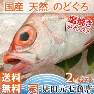 今話題の高級魚、白身のトロとのど黒(赤ムツ)2尾セット 国産天然【送料無料】|moto7mita