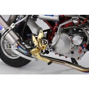 OVER オーヴァー バックステップ 4ポジション (ディスク) ゴールド MONKEY|motoism