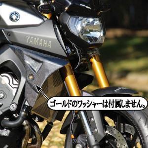 POSH ポッシュ 065200-AC ラジエターシュラウド 綾織カーボン YAMAHA MT-09|motokichi