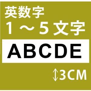 切り文字ステッカー   1〜5文字 色&英数字・変更OK   TEXT- A  S/3cm  カッティングシート・シール・デカール|motologo