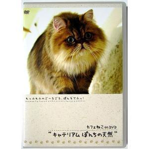 """【中古】カフェねこ ON DVD  """"キャテリアム ぽんちの天然""""〔DVD〕 motomachirhythmbox"""