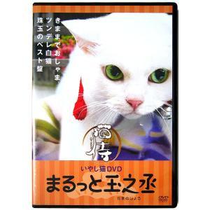 【中古】猫侍 いやし猫DVD まるっと玉之丞〔DVD〕 motomachirhythmbox