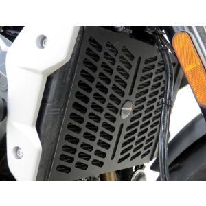 POWERBRONZE ラジエーターガード/カバー  トライアンフ TRIDENT660/トライデント660 21- motoparts