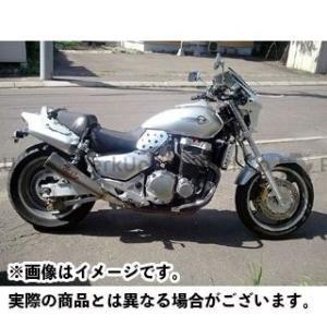 world walk 汎用ビキニカウル DS-01 typeAERO(フォースシルバーメタリック)