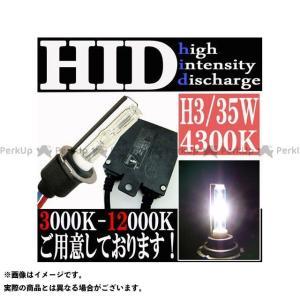 ライズコーポレーション 汎用 35W HIDフルキット H3 防水 極薄型 スリムバラスト 4300K|motoride